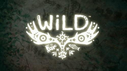 jeu vidéo wild,open world,monde ouvert,rpg
