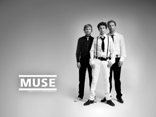 muse_wall_made_by_damien.jpg