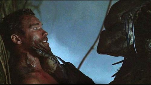 predator-arnold.jpg